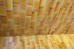 Honey-Shower-tiles