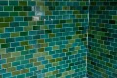 blend-tiles-shower1