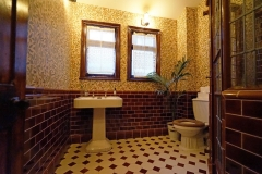 brown-shower-room-5