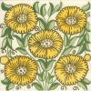 bedford-park-anenome (1)