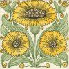 bedford-park-daisy (1)
